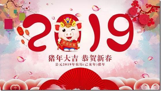 赵容祝您2019新年快乐!